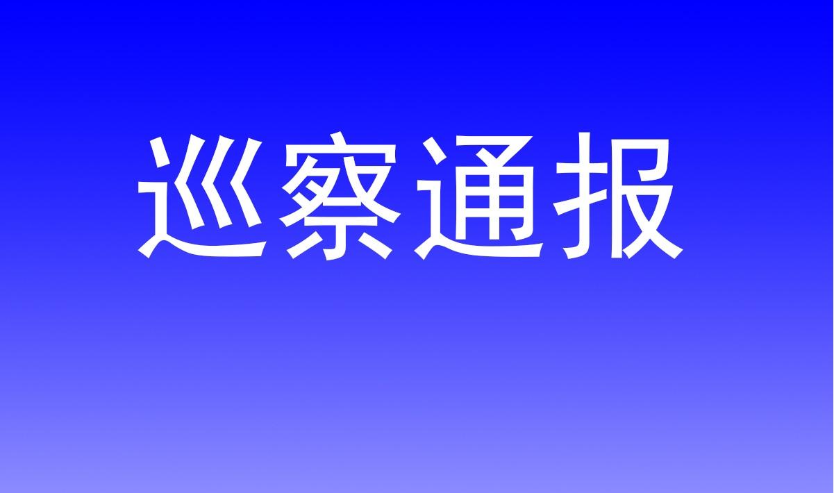 中共临海市文化旅游集团有限公司委员会关于巡查整改情况的通报