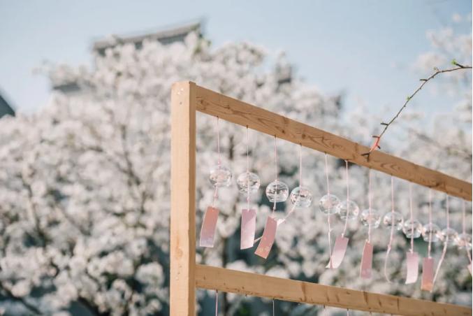 据说有雨,但樱花市集还是要逛 台州府城「樱花下·春日市集」指南