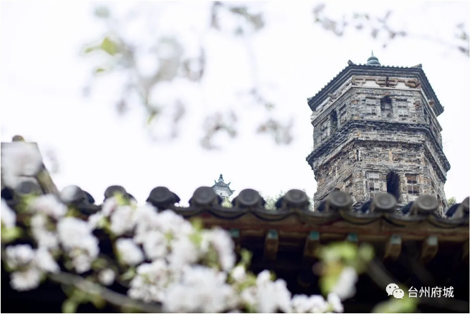 约吗?台州府城文化旅游区面向全国免费开放啦!!